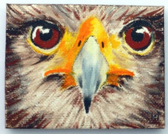 Bird of Prey - miniature oil painting