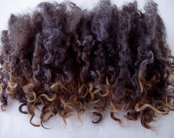 0.7oz/20g, Wensleydale locks, wensleydale curls, natural black curls, felting wool, spinning fiber, curly fleece, dolls hair, felting fiber