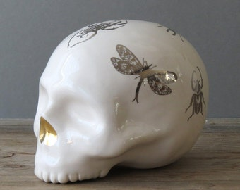 Silver Insect Beetle Skull