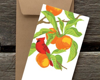 Cardinal in Persimmon Tree : Pack of 8 eco-friendly flat cards