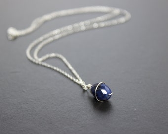 Sodalite Sterling Silver Charm Necklace