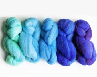 "BFL Wool Ombre Gradient Spinning Fiber Combed Top 5 oz total, ""Sylph"""