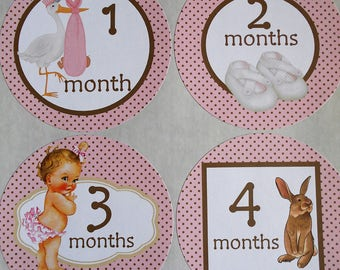 PINK and TAUPE-Monthly Bodysuit Stickers-set of 13