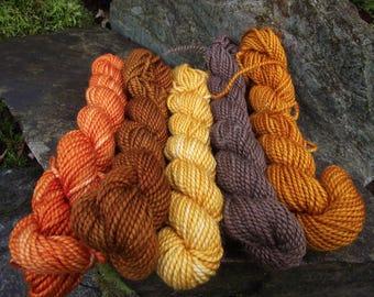 Yarn kit Merino wool Baby alpaca, Silk ,hand dyed DK sport yarn kit--Aunt Dot