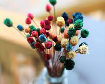 Happy flowers-45+ Dried Mini Wedding flowers-pink-purple-yellow-green small flowers