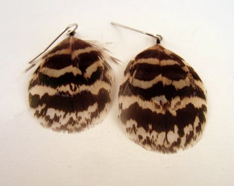 Feather Earrings small peacock