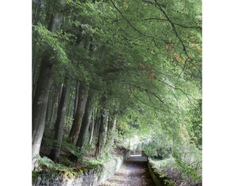 Doune Back Road Fine Art Photography Scotland Green and romantic stone walls Woodland Scottish dreamy fantasy Outlander inspired home decor