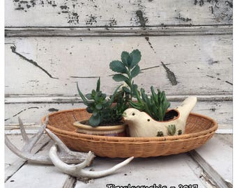 Wicker Plant Holder - Plant Holder - Chip n Dip Bowl - Chip and Dip Bowl - Wicker Basket - Wall Basket - Flat Basket - Table Centerpiece