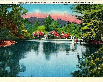 Vintage Postcard - Old Swimming Hole in the Mountains (Unused)