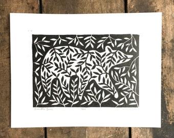 Bramble Bear   Linoleum Print on Paper