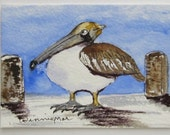 PROUD PELICAN hoping for Fish an original  ACEO