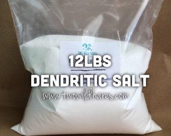 12lbs. DENDRITIC Salt, Fine