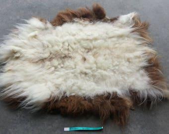 Icelandic Sheepskin- Badger Moorit and SUPER Long Wooled Sheep Hide Lot No. 25201TURQ