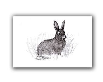 New Mom Baby Bunny Gifts Rabbit Nursery  Art Print Equine Art From Drawing  LLMartin Country Farm Artwork