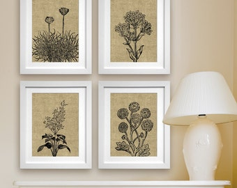 Wild Flowers Botanical Prints (Series C4) Set of 4 - Art Poster Prints (Featured in Coffee Burlap) Modern Vintage Flower Art Prints