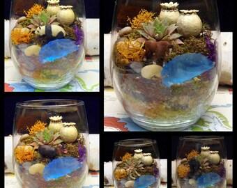 Succulent Moss Terrarium, Choose your Desktop Buddy