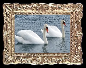 Swan Swans at The Lake Miniature Dollhouse Art Picture 6891
