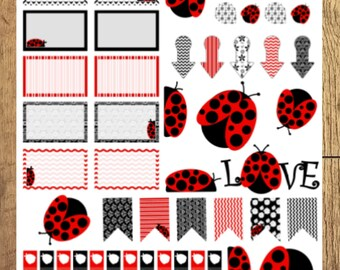Lady Bug Love Assorted Layout