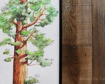 Guest Book Alternative, Wedding guest book, Signature Tree, unique guest book, Watercolor Sequoia tree, housewarming gift, fingerprint tree
