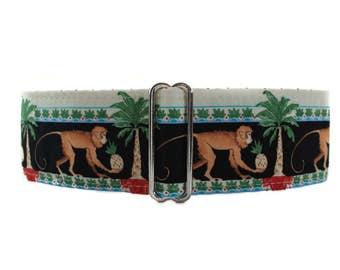 Monkey Martingale Collar, 2 Inch Martingale Collar, Monkey Dog Collar, Greyhound Collar, Sighthound Collar, 2 Inch Martingale Collar