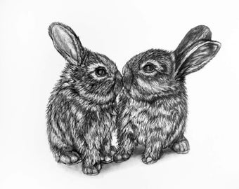 Bunny Rabbit pencil Drawing - 1 Bunny Kiss