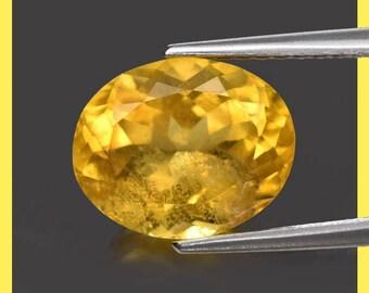 BERYL (33685) * * * * Beryl / Helidor -> Intense & Sparkly! 10 x 8mm Golden Yellow Beryl (Heliodor)