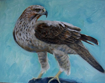 Hawk-Holiday gift / Wedding gift / Birthday gift, Favorite animal, Original oil painting