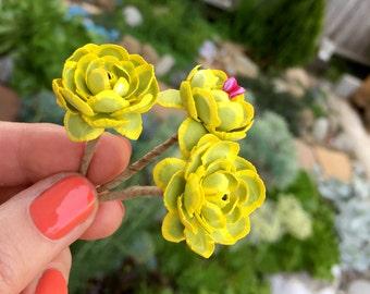 SV02 Sempervivum 1:12 Miniature Succulent Plant Kit