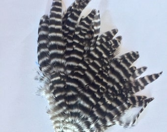Black White Grizzly Striped FEATHER PAD for crafting or fly tying Rooster feathers