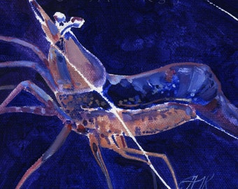 Coral Shrimp Study - Original Oil Painting on Loose Canvas - 5x5 Inch Image Mounted and Matted to 10x10 Inches