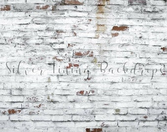 LARGE 8ft x 6ft Wide Vinyl Photography Backdrop /  Brick Wall