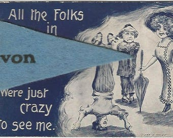 Dark Navy Blue Frat Club Scene 1912 All the folks in Avon were just crazy to see me Felt Pennant Artist Signed Cobb x Shinn Vintage Postcard