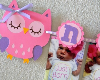 Owl First Birthday Party - First Year Photo Clothespin Banner, Owl Party Decorations - Picture Banner, Girl Owl Decor, Owl Pink and Purple