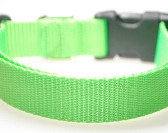 "Lime Green Webbing - 1"" Wide Adjustable Dog Collar"