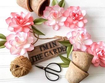 Perfect forever garden rose