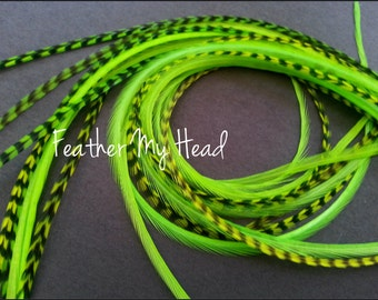 Feather Hair Extension - 5 Piece 9 - 12 inches Long (23-30 cm) Grizzly Stripe / Solid Mix - Chartreuse Green- Brights