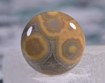 Ocean Jasper 14x4.2mm Natural Gemstone Cabochon Jewelry Supplies Ocean Jasper