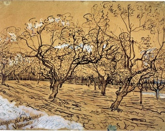 Van Gogh Reproduction.   Provencal Orchard, 1888 by Vincent van Gogh, Fine Art Print.