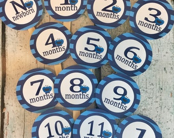 COOKIE MONSTER Inspired 1st Birthday Photo Clips Banner Newborn - 12 months - Blues - Party Packs Available