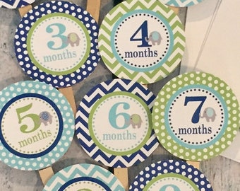 SWEET ELEPHANT 1st Birthday Photo Clips Banner Newborn - 12 months Chevron - Blue Green - Party Packs Available