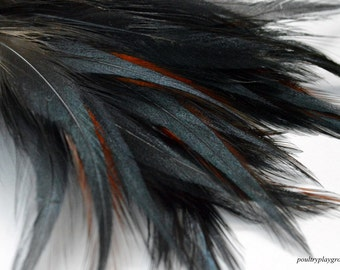 Iridescent Black with Red Rooster BB 4-5 inch Long Spear Appx 30
