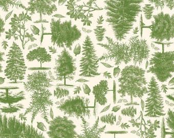 C4011-Green Trail Mix by Riley Blake Designs 3 yards