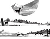 1 Roll of  Limited Edition Washi Tape- Deer and Snow