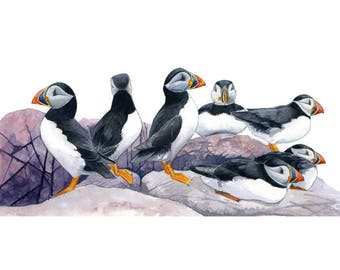 Puffin greeting card: 'Puffin parade', puffin card, seabird card, comical bird card, wildbird card, British wildlife card, bird art card