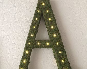 "23"" Moss Letters with Lights"