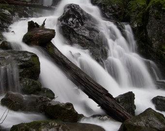 8x10 Print, Rodney Falls, Columbia River Gorge, Washington