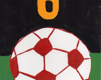 6 Soccer Balls