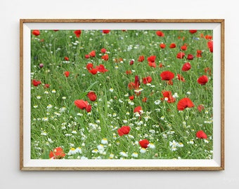 Instant download,Downloadable photo,Printable photography,Nature photo art,Poppy flowers foto,Flowers art picture,Green field,Digital foto
