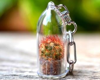 Copper King Cactus Terrarium Keychain / Cactus Keychain / For Her Keychain / Keychain Lanyard / Boyfriend Gift