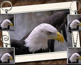 Eagle Photo Note Card Set - Eagle Pendant, Eagle Keyring, Eagle Ornament Or Eagle Wine Charm - Bird Greeting Card Handmade (GP27)